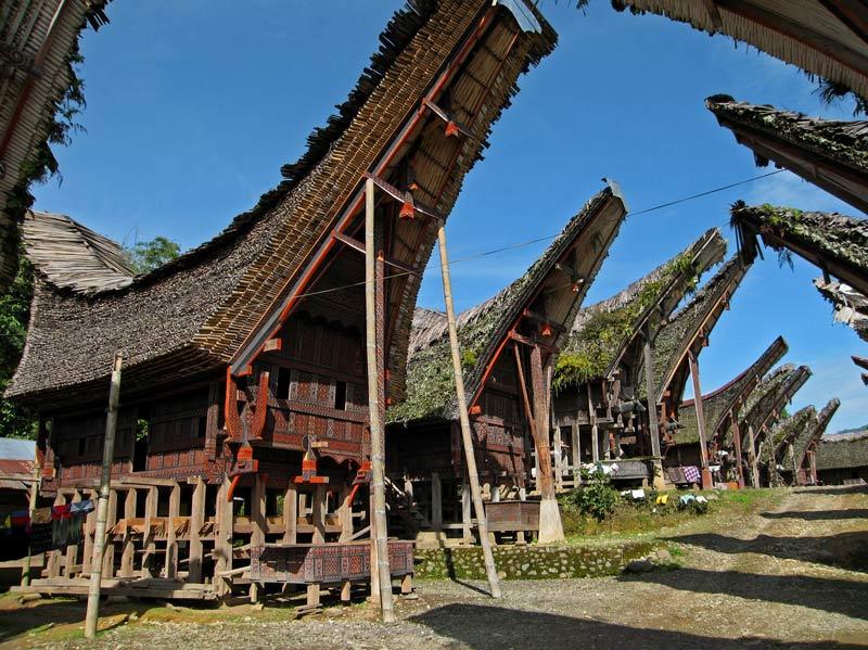 Download this Tongkonan Rumah Adat Toraja Arsitektur picture